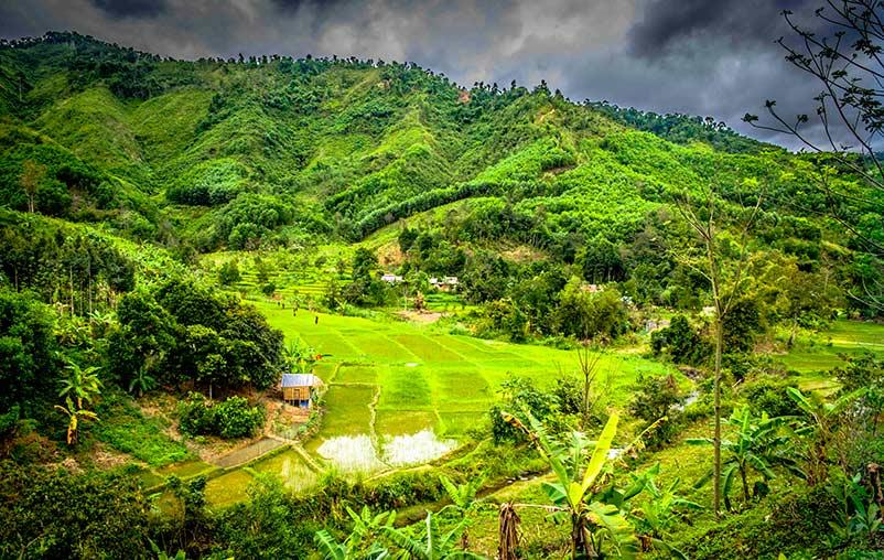 Gudereit in Vietnam